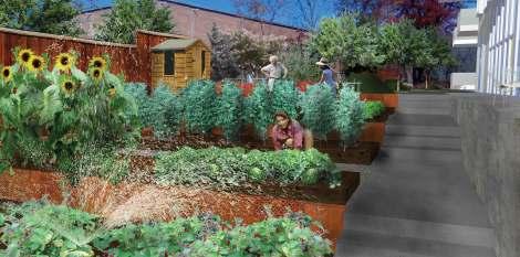 Durham Central Park Cohousing Community Durham NC Eric