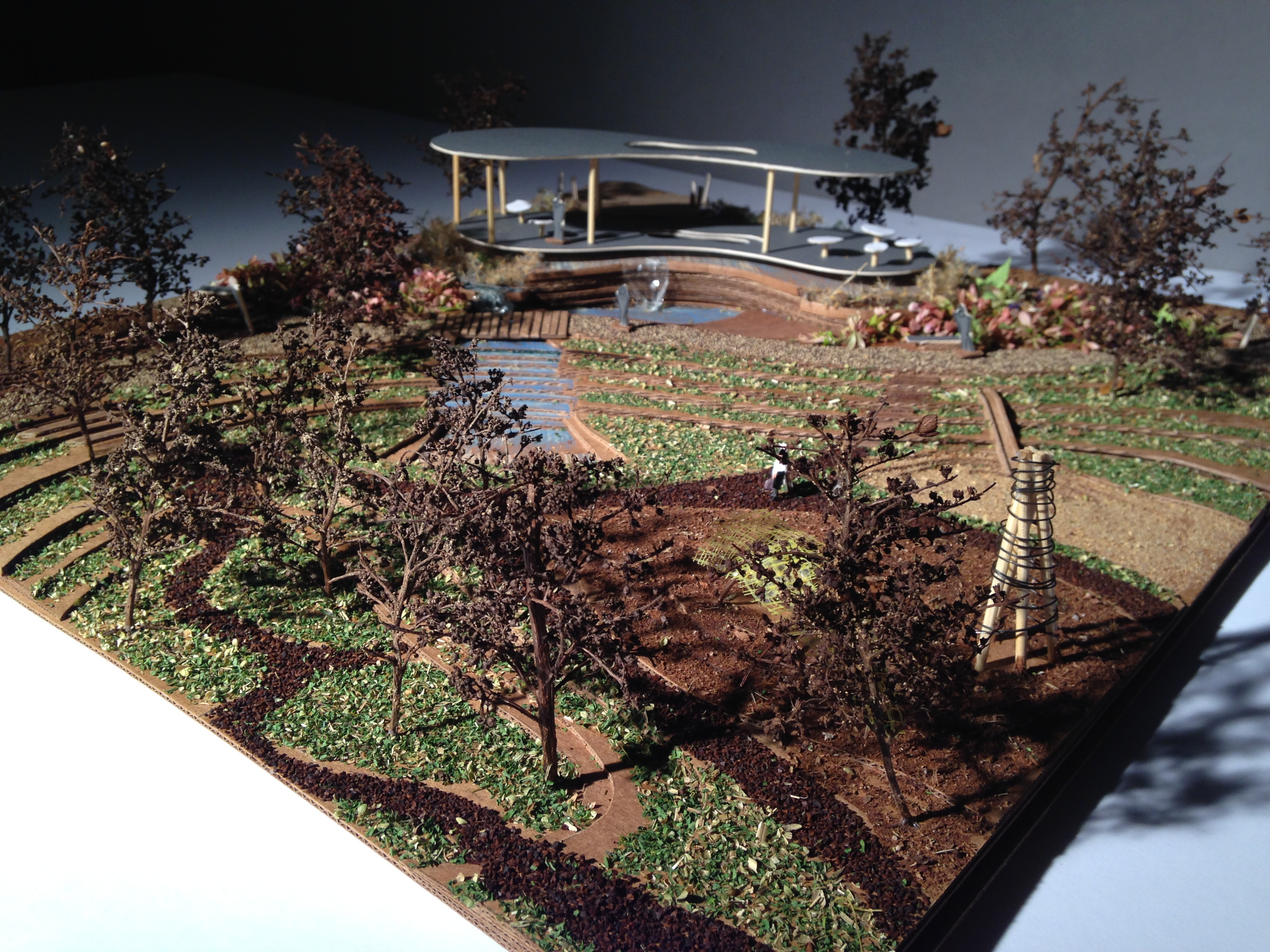 Wade Commons- Raleigh, NC | Eric Thomas- Reinventing Landscapes ...